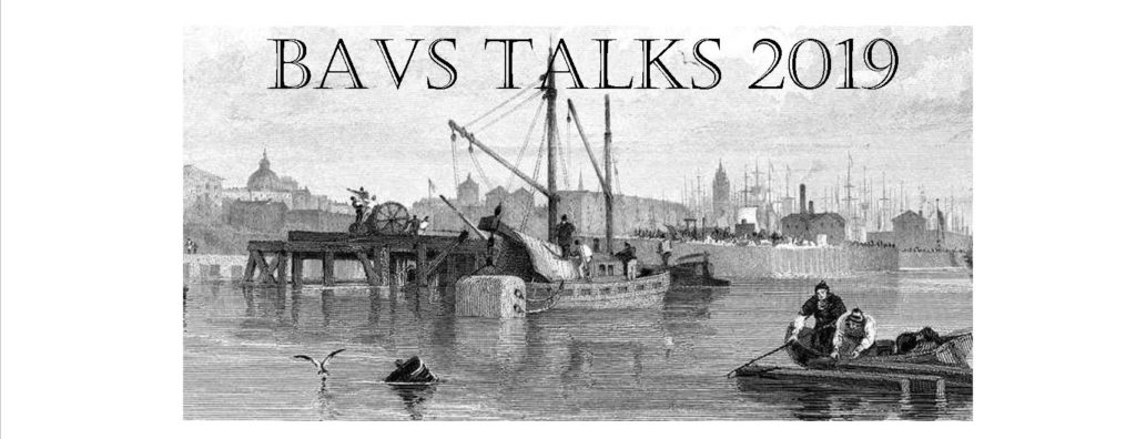 The videos of BAVS Talks 2019 at the University of Liverpool are now online.